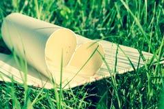 Coeur de livre sur l'herbe, ton de couleur de vintage Photographie stock