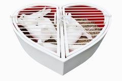 Coeur de mariage avec les pigeons blancs d'isolement Photos stock