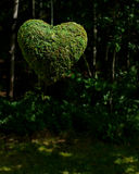 Coeur de nature Photos stock