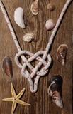 Coeur de noeud de mer, étoile de mer de coquillage Photos stock