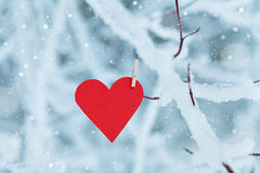 Coeur de papier accrochant sur la branche d'arbre de neige pour le jour de valentines Image stock