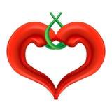 Coeur de poivre de piment illustration stock