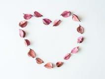 Coeur de pot-pourri Images stock