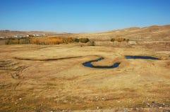 Coeur de prairie Photo libre de droits