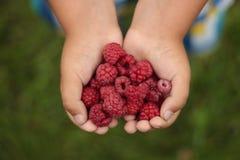 Coeur de Rapsberry image stock