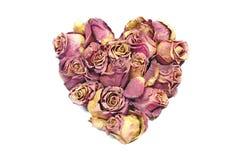 Coeur de Rose Image libre de droits