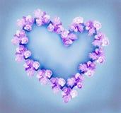 Coeur de Rose Photos stock