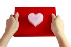 Coeur de rose du ` s de Valentine Photographie stock libre de droits