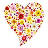 Coeur de source Image stock