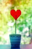Coeur de sucrerie dans un pot Photos libres de droits