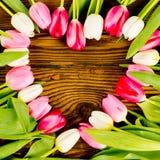 Coeur de tulipe Photographie stock libre de droits