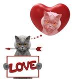 Coeur de valentine de maquette avec le chat Photos libres de droits