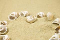 Coeur de Valentine fait avec des coquilles sur le fond de sable Photo libre de droits