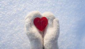 Coeur de Valentines du bonbon un fait de sucre avec l'effet de réflexion sur la neige photos libres de droits