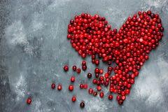 Coeur des baies, coeur rouge de canneberge, amour et santé concentrés Photographie stock libre de droits