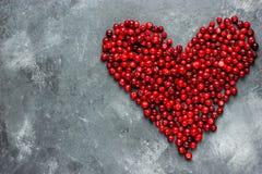 Coeur des baies, coeur rouge de canneberge, amour et santé concentrés Photos stock