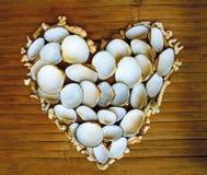 Coeur des coraux et des coquilles blancs sur le fond en bois Romance marin Photographie stock