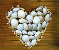 Coeur des coraux et des coquilles blancs sur le fond en bois Vacances marines Photo libre de droits