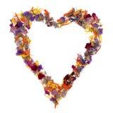 Coeur des fleurs Image stock