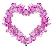 Coeur des fleurs roses d'isolement d'orchidée Image libre de droits