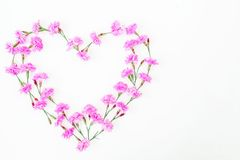 Coeur des fleurs roses sur le fond blanc Jour du `s de Valentine Configuration plate, vue supérieure Photos libres de droits