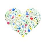 Coeur des fleurs sauvages sur un fond blanc illustration libre de droits