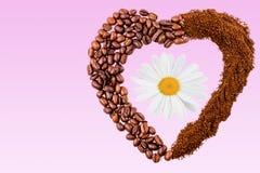 Coeur des grains de café et de la fleur blanche sur le fond rose Images stock
