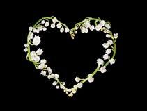 Coeur des lillies Photographie stock
