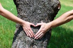 Coeur des mains photo libre de droits