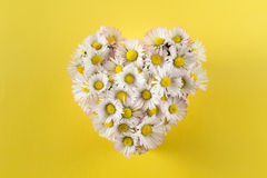 Coeur des marguerites Images stock
