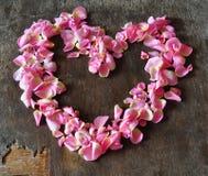 Coeur des pétales Photo libre de droits