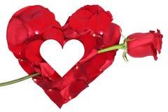 Coeur des pétales avec le sujet d'amour de rose de rouge Valentine et le MOIS Photos stock