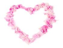 Coeur des pétales de rose Photographie stock