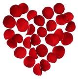 Coeur des pétales de rose rouges d'isolement sur le fond blanc Photographie stock