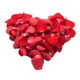 Coeur des pétales de rose rouges d'isolement sur le fond blanc Image stock