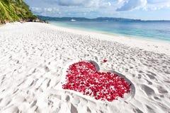 Coeur des pétales de roses sur la plage de sable de mer Images libres de droits