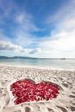 Coeur des pétales de roses sur la plage de sable de mer Image libre de droits