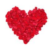 Coeur des pétales des roses. Image libre de droits