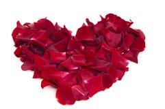 Coeur des pétales roses Photo stock