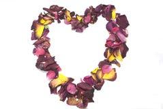 Coeur des pétales roses Photographie stock