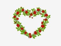 Coeur des roses Photographie stock libre de droits