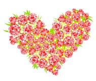 Coeur des roses Images libres de droits