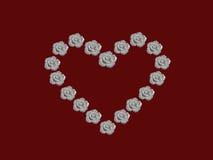 Coeur des roses blanches Photo libre de droits