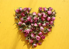 Coeur des roses roses Photos stock