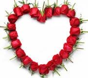 Coeur des roses rouges Images stock
