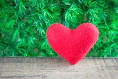 Coeur des roses rouges d'oreiller Images stock