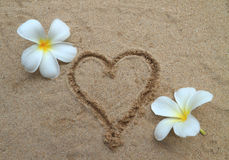 Coeur dessiné sur la plage de sable Image stock