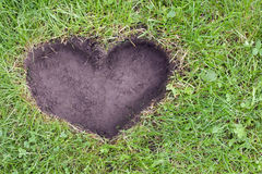 Coeur du concept de la terre Image stock
