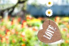Coeur en bois sur une ficelle, et camomille Image stock