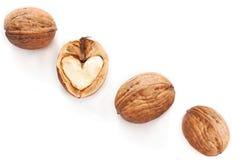 Coeur en noix Photographie stock libre de droits